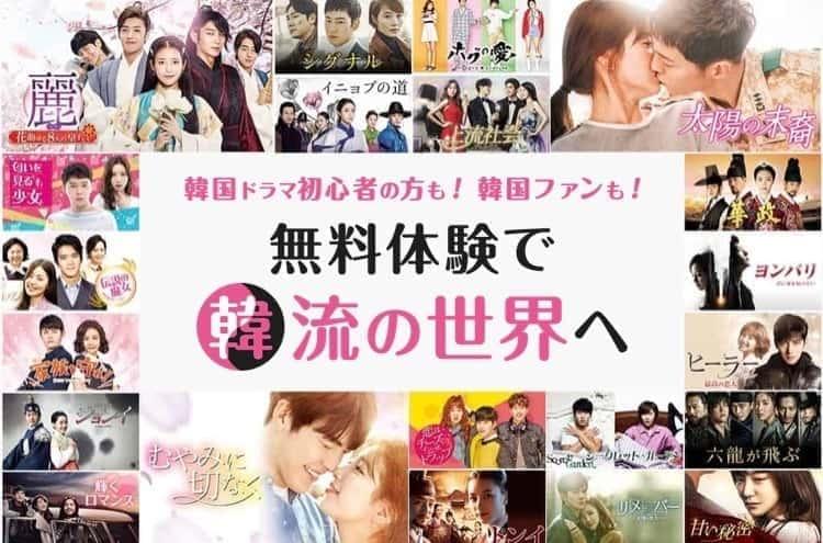動画配信サービス U-NEXT